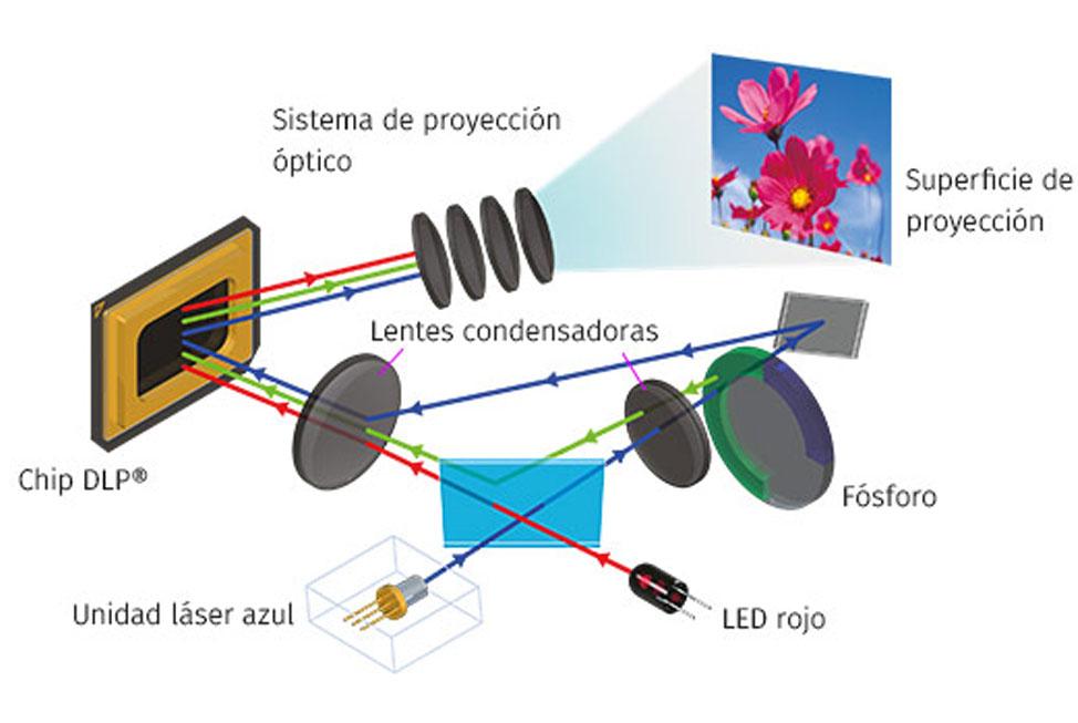 Sistema F1 Loudspeaker